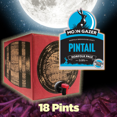 Moon Gazer Pintail Norfolk Pale 18 Pint Demipin