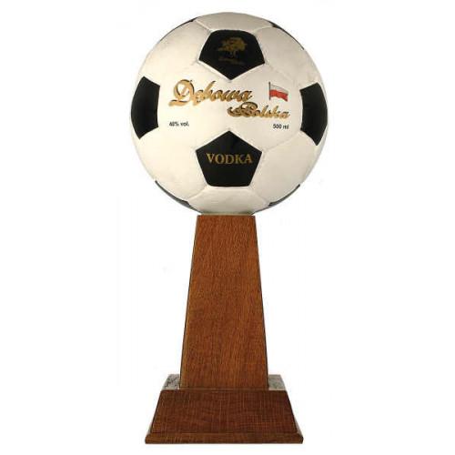 Debowa Vodka Football Cup