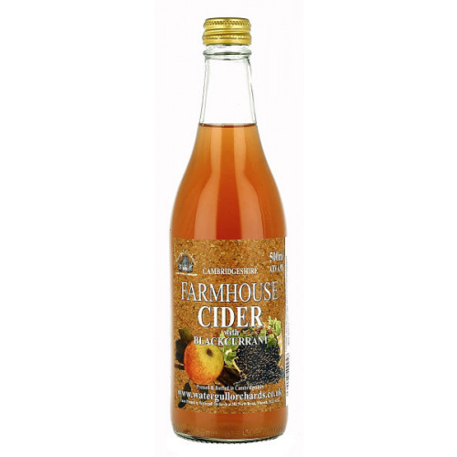 Watergull Orchards Farmhouse Cider with Blackcurrant