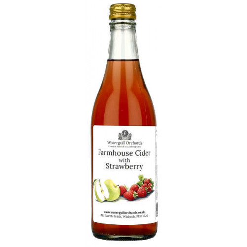 Watergull Orchards Farmhouse Cider with Strawberry